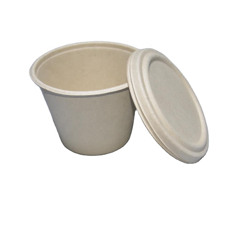Sugarcane Bagasse Cup and Lid Set